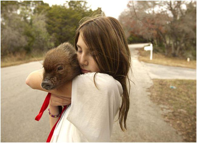 девушка с мини-пиги